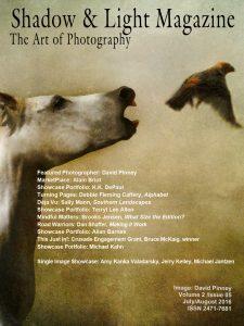 david pinney photography and shadow light magazine