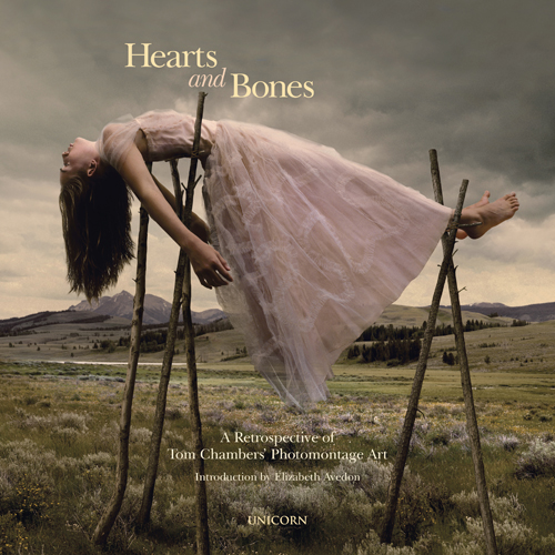 Tom Chambers, Heart and Bones