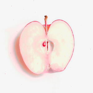 Eve's Apple • ©Diane Wiseman Linscott